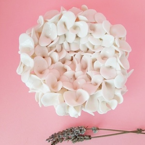 Limited Edition Flower Collection_Parian Porcelain Wall Flower